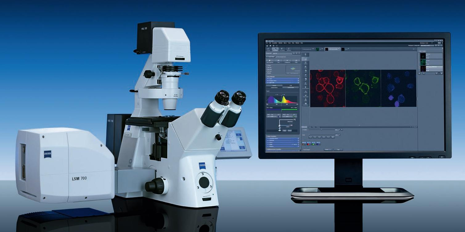 confocal microscopy lab essay Confocal microscope laboratory capabilities the confocal imaging laboratory supports: separation of up to four fluorophores in a single sample fluorescence excitation of cfp, gfp, fluorescein, fluo-3, yfp, rhodamine, and cy5.